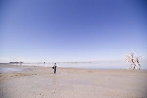 Mark Harmel, @2009 Martin Trailer